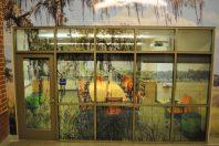 Springfield Elementary – Charleston, SC